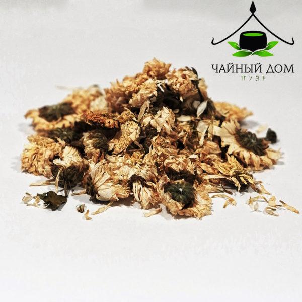 Hrizantema Belaia2 Teahousepuer Product 600x600